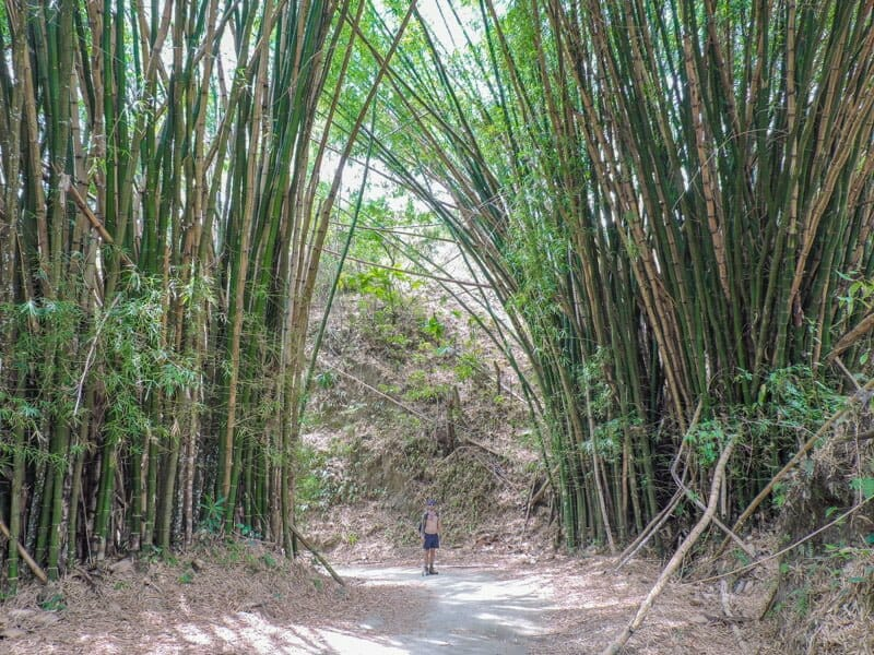 Things to do in Minca, Colombia