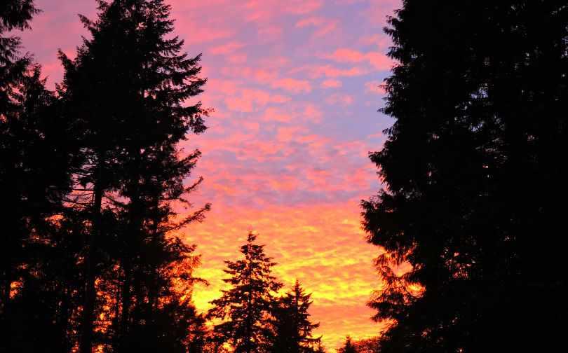 Sunset Roberts Creek Sunshine Coast Photo of the Fortnight 11