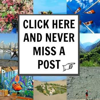 Newsletter Sign Up for Blog Posts
