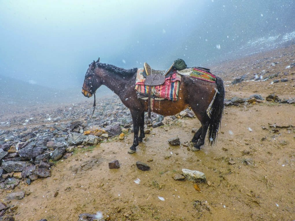 Lares Trek Machu Picchu Peru I Three Weeks in Peru Itinerary
