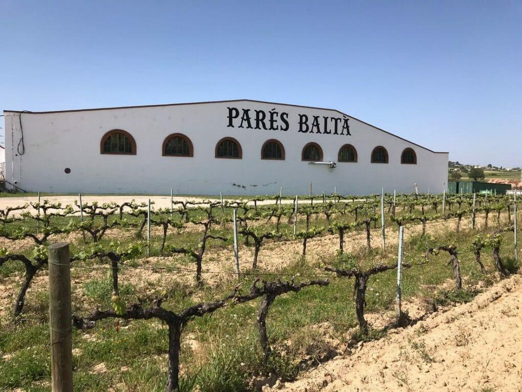 Penedees Wine Region