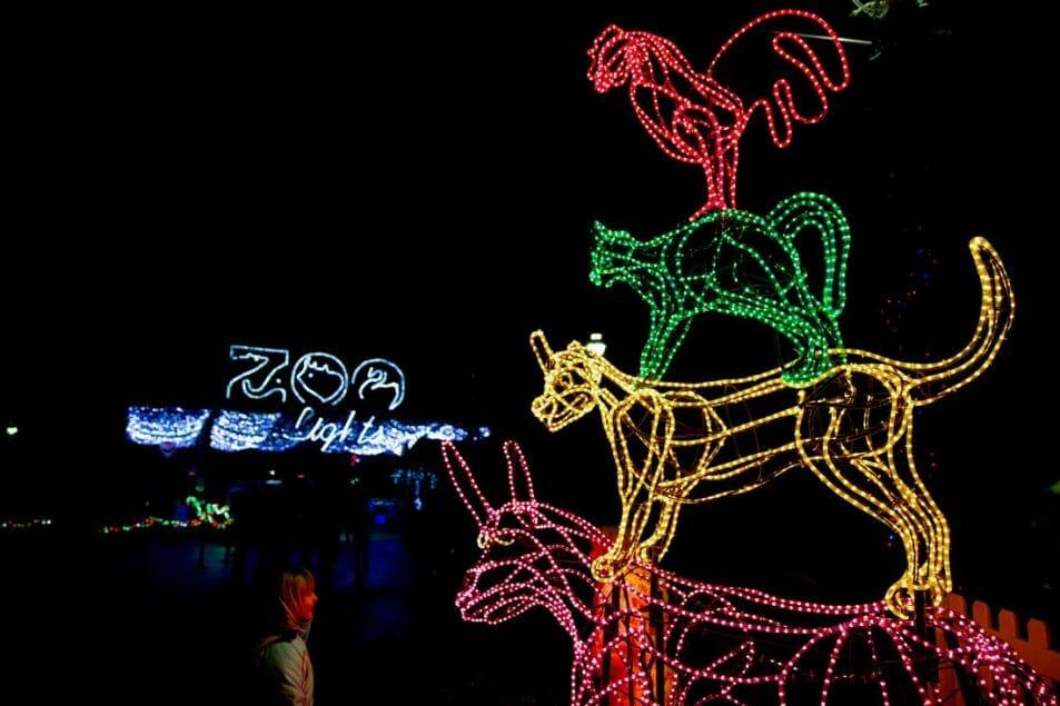 Oregon Zoo Lights Portland in December