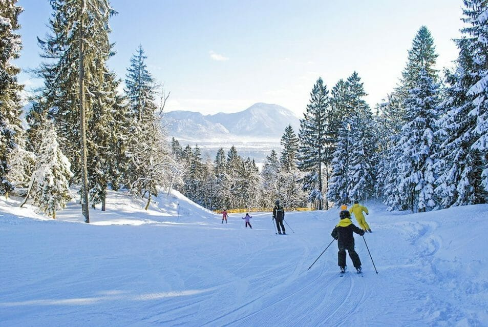 Straza Hill Skiing Slovenia Bled