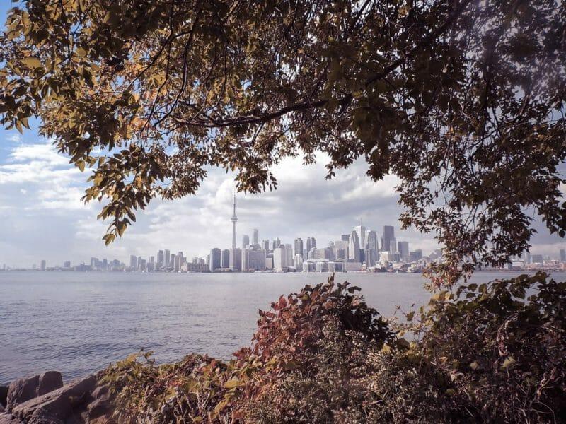 Toronto Island, trees, lake Ontario, Toronto skyline