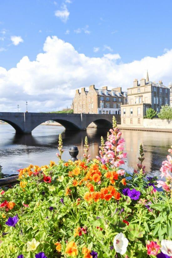 Wick Bridge Flower North Coast 500 Scotland_