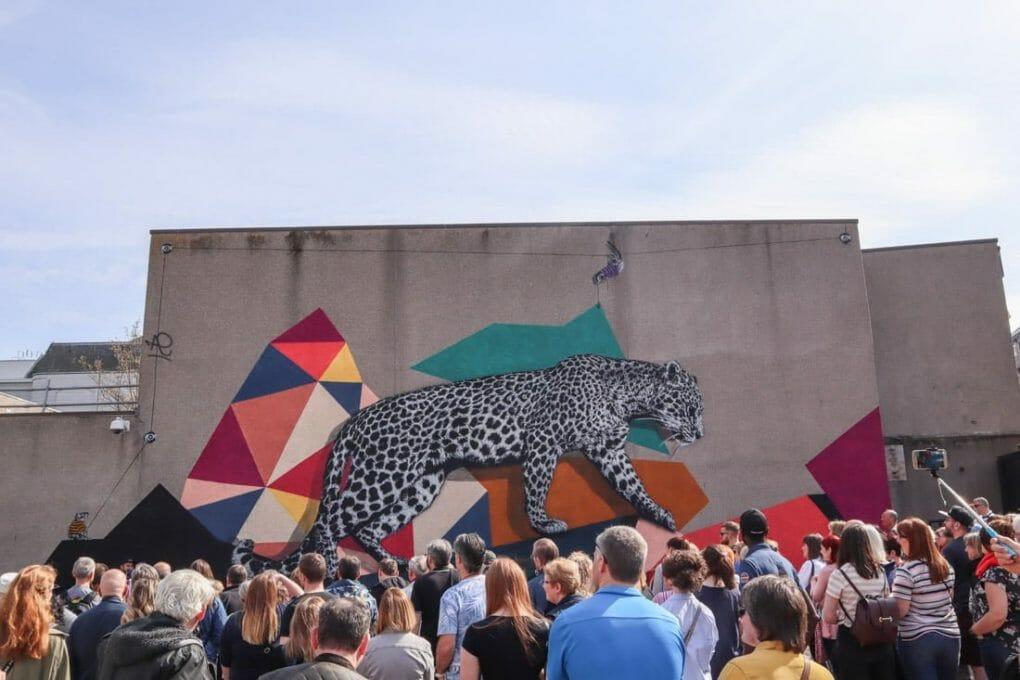 Hamma Woods Colourful Leopard Nuart Aberdeen