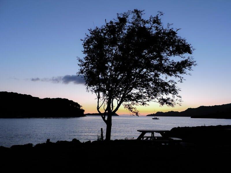 Sunset, Sheildaig, Scotland, tree, bench, sea