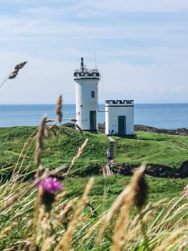 Ellie Lighthouse Fife, flowers, grass, blue skies