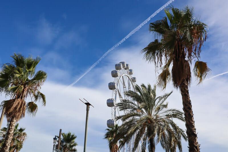 Palm Trees Ferris Wheel Port Vell Barcelona
