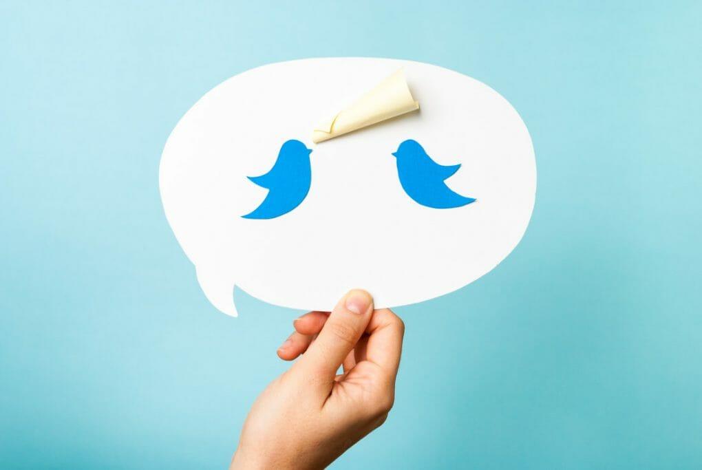 Two birds Twitter logo