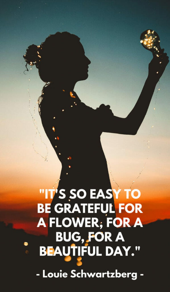 It's so easy to be grateful for a flower, for a bug, for a beautiful day. Sunshine quotes, quotes about sunshine, positive quotes, inspirational quotes, motivational quotes, sunny, beach, wellness, self help, calm, happy, smile, Instagram captions.
