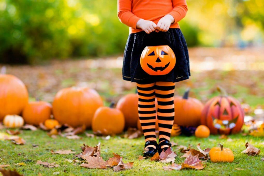 Kid. Pumpkin. Fall USA-4