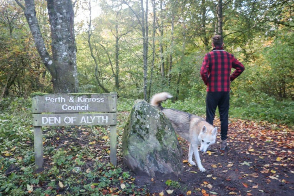 Alyth Den in Blairgowrie