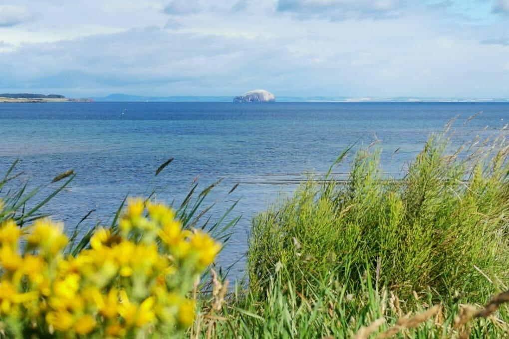 Bass Rock Beach Dunbar Scotland Bowie