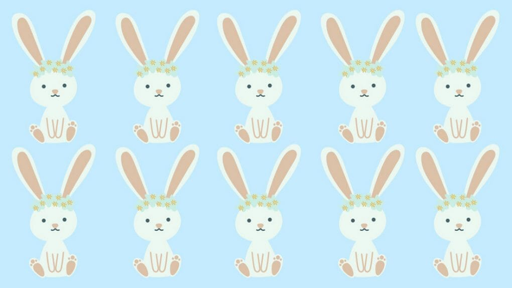 Easter bunnies background