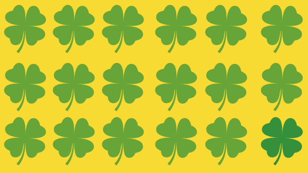 Four Leaf Clovers Background Yellow