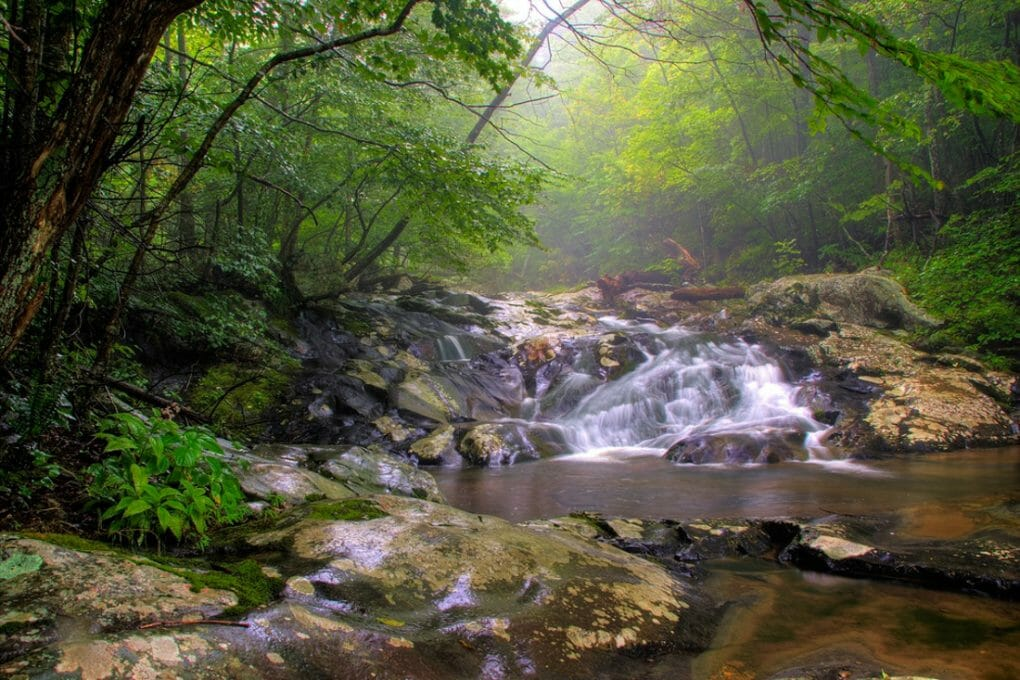 Waterfalls in white oak canyon in Shenandoah national park near Front Royal, Virginia_