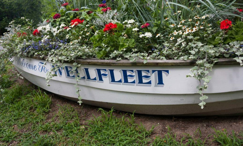Boat filled with flowers Wellfleet, Massachusettes.