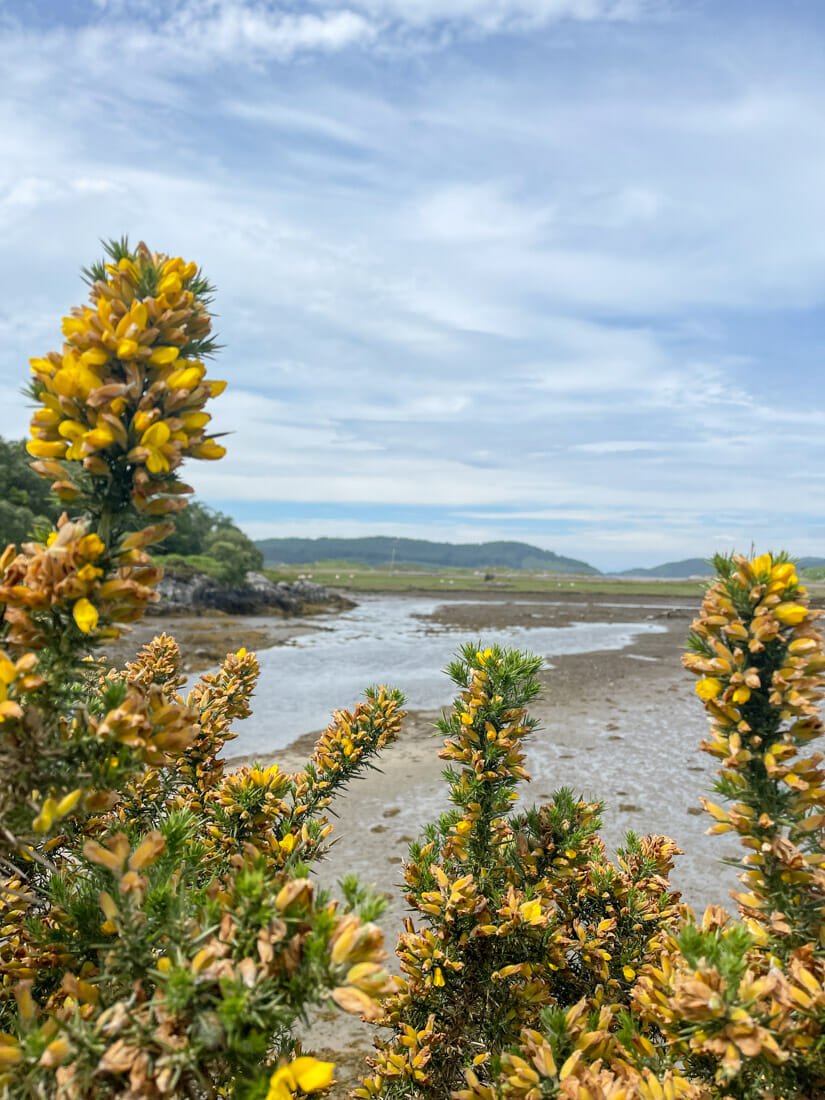 Singing Sands in Ardnamurchan, Scotland