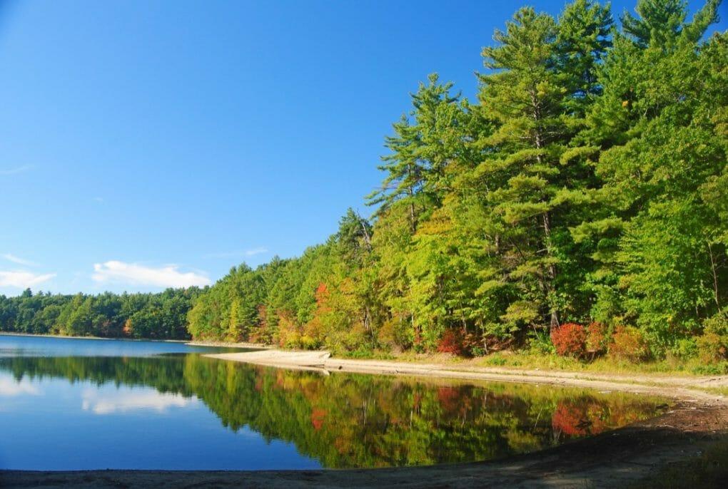 The Walden Pond near Concord, Massachusetts, USA