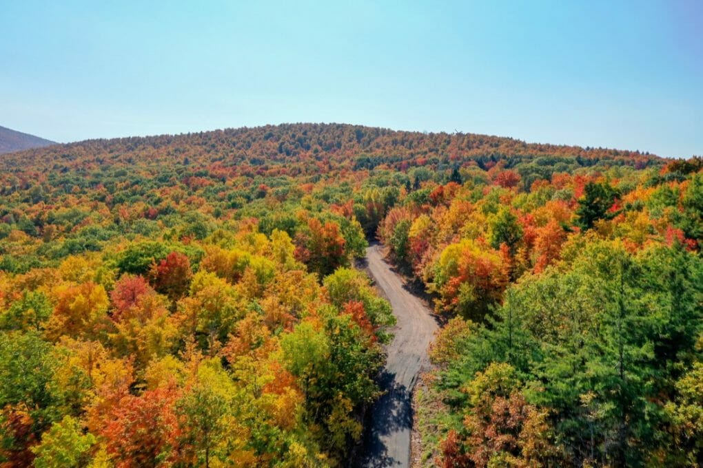 Aerial view of fall foliage along the Catskill Mountains in upstate New York along Five State Lookout.439076974_l-2015